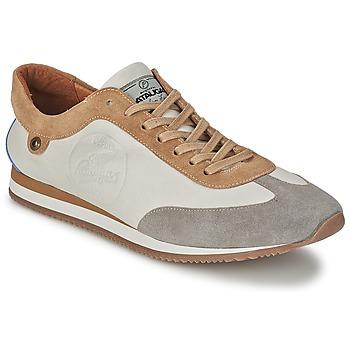 Schoenen Heren Lage sneakers Pataugas ISIDO Grijs