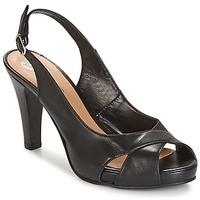 Schoenen Dames Sandalen / Open schoenen Betty London LIMONADE Zwart
