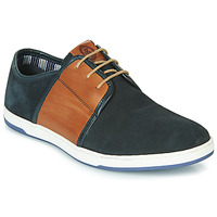 Schoenen Heren Lage sneakers Base London JIVE Blauw /  camel