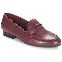 Schoenen Dames Mocassins André TIM Bordeaux