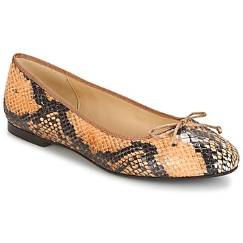 Schoenen Dames Ballerina's Betty London MICORO Brown / Python