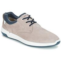 Schoenen Heren Lage sneakers Lloyd ACHILLES Beige