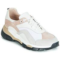 Schoenen Dames Lage sneakers Tosca Blu KELLY Wit / Beige