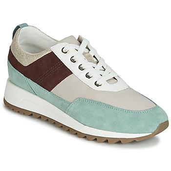 Schoenen Dames Lage sneakers Geox D TABELYA Beige / Brown / Groen
