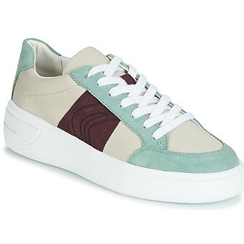 Schoenen Dames Lage sneakers Geox D OTTAYA Creme / Groen