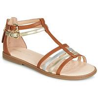 Schoenen Meisjes Sandalen / Open schoenen Geox J SANDAL KARLY GIRL  camel / Goud