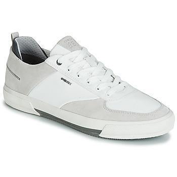 Schoenen Heren Lage sneakers Geox KAVEN A Wit