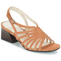 Schoenen Dames Sandalen / Open schoenen Vagabond BELLA Beige