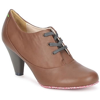 Schoenen Dames Low boots Terra plana GINGER ANKLE Brown