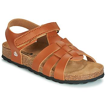 Schoenen Jongens Sandalen / Open schoenen Citrouille et Compagnie JANISOLERE Brown
