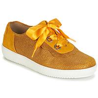 Schoenen Dames Lage sneakers Casta HUMANA Geel / Goud