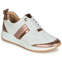 Schoenen Dames Lage sneakers JB Martin 1KAP Wit