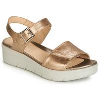 Schoenen Dames Sandalen / Open schoenen Stonefly AQUA III 2 LAMINATED Goud