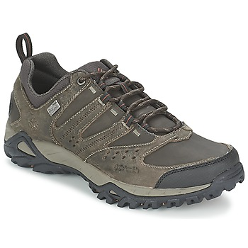 Schoenen Heren Wandelschoenen Columbia PEAKFREAK XCRSN LEATHER OUTDRY Earth