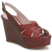Schoenen Dames Sandalen / Open schoenen Paco Gil RITMO SELV  camel / Bordeaux