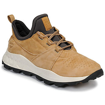 Schoenen Heren Lage sneakers Timberland BROOKLYN LACE OXFORD Beige