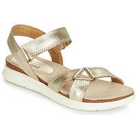 Schoenen Dames Sandalen / Open schoenen André ARRY Goud