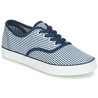 Schoenen Dames Lage sneakers André STEAMER Blauw / Wit