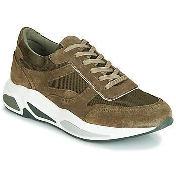 Schoenen Dames Lage sneakers André ROLLO Groen