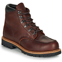 Schoenen Heren Laarzen Red Wing SAWMILL Brown