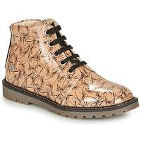 Schoenen Meisjes Laarzen GBB NAREA Roze / Zwart