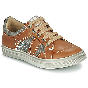 Schoenen Jongens Lage sneakers GBB PALMYRE Cognac