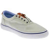 Schoenen Heren Lage sneakers Sperry Top-Sider  Groen
