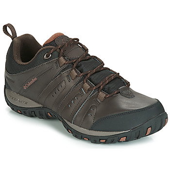 Schoenen Heren Allround Columbia WOODBURN II WATERPROOF Brown