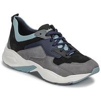 Schoenen Dames Lage sneakers Timberland DELPHIVILLE LEATHER SNEAK Zwart