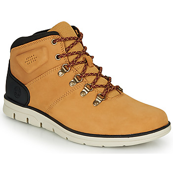Schoenen Heren Hoge sneakers Timberland BRADSTREET HIKER Graan