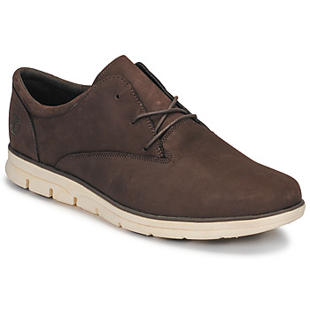 Schoenen Heren Lage sneakers Timberland BRADSTREET PT OXFORD Brown
