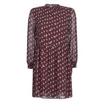 Textiel Dames Korte jurken Betty London LILY Bordeaux