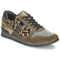 Schoenen Dames Lage sneakers Kennel + Schmenger LIZAN  camel