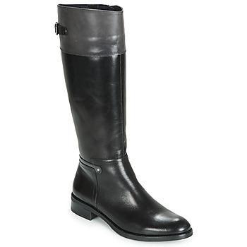 Schoenen Dames Hoge laarzen Dorking TIERRA Zwart / Grijs