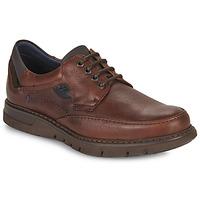 Schoenen Heren Derby Fluchos CELTIC Brown