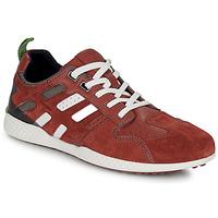 Schoenen Heren Lage sneakers Geox U SNAKE.2 Brown / Brique