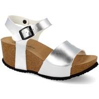 Schoenen Dames Sandalen / Open schoenen Shoes&blues M-77 Plata