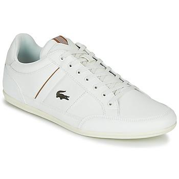 Schoenen Heren Lage sneakers Lacoste CHAYMON 319 1 Wit