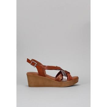 Schoenen Dames Sandalen / Open schoenen Sandra Fontan GOLFO Brown