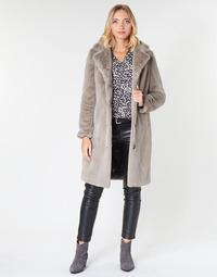 Textiel Dames Mantel jassen Oakwood CYBER Dark / Beige