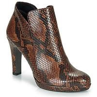 Schoenen Dames Enkellaarzen Tamaris LYCORIS Brown / Python