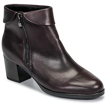 Schoenen Dames Enkellaarzen Ara 16913-67 Brown
