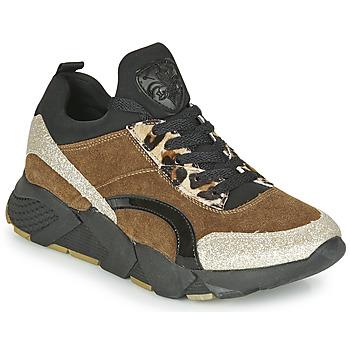 Schoenen Dames Lage sneakers Philippe Morvan VERSO V2 GLITTER FIN Brown / Zwart