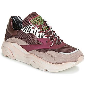 Schoenen Dames Lage sneakers Meline JOLI Roze / Beige