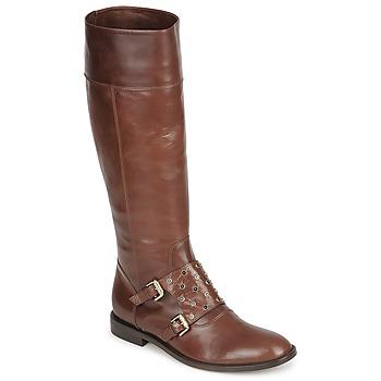 Schoenen Dames Hoge laarzen Etro QUERO Brown