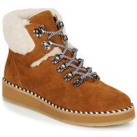 Schoenen Dames Laarzen Ippon Vintage RIDE LAND  camel