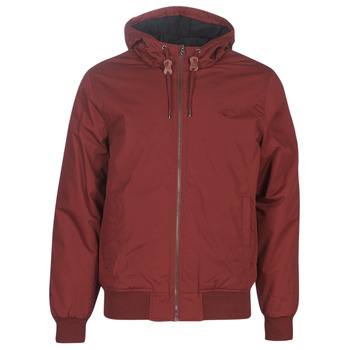 Textiel Heren Wind jackets Element DULCEY Bordeaux