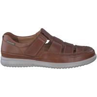 Schoenen Heren Sandalen / Open schoenen Mephisto TAREK Brown
