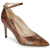 Schoenen Dames pumps André LIDOO Brown