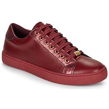 Schoenen Dames Lage sneakers André BERKELEY Bordeaux